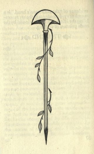 An illustration of graver/burin, with two leafy branches winding around it